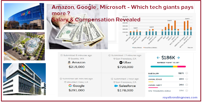 salary-developer-payscale-more-tech-giant-compensation-range-engineer-amazon-google-microsoft-revealed